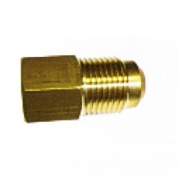 "ADAPTER 1/4""(F) SAE - 5/16""(M) SAE"